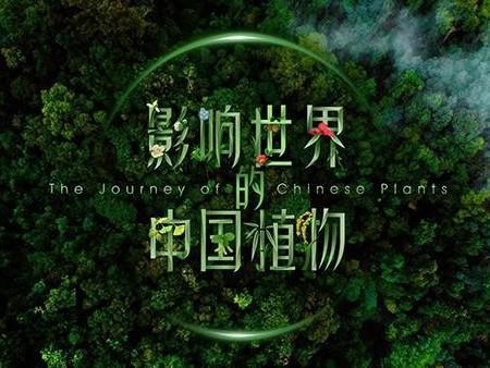 國內首部植物紀錄片將于世園會推出!