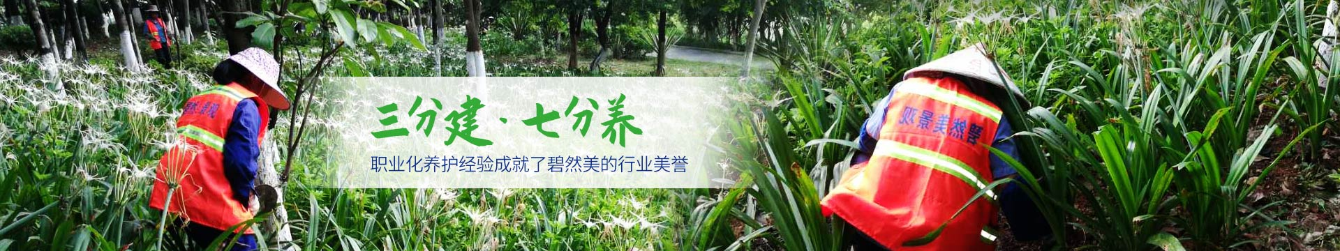 碧然美-園林綠化養護